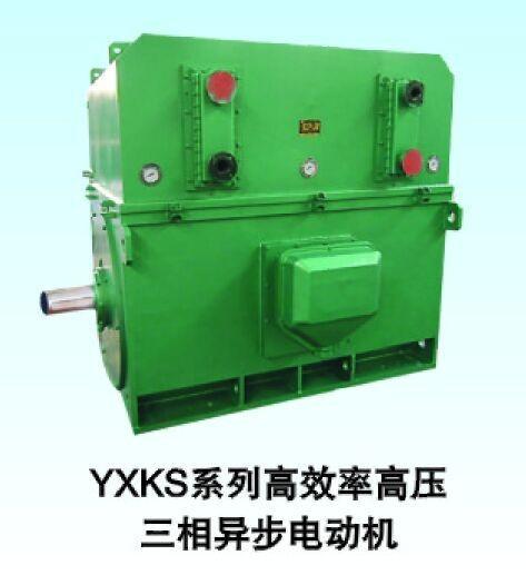 西安西玛电机YKS7108-8 1800KW 10KV IP54高压电机
