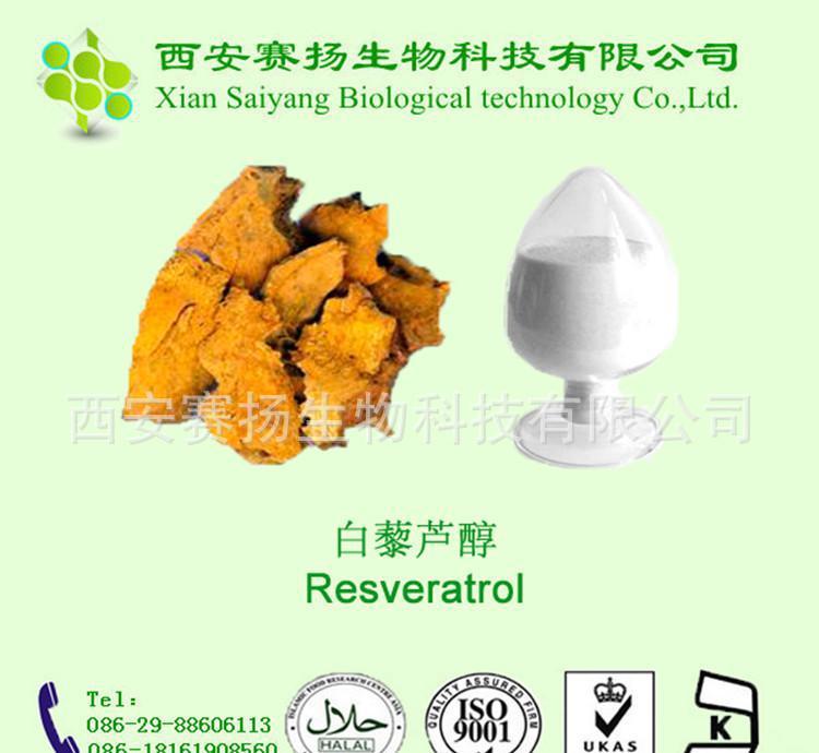 【现货】虎杖提取物、天然白藜芦醇、白藜芦醇99%